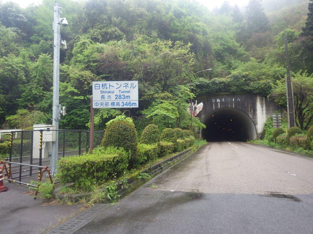 shirokui.jpg