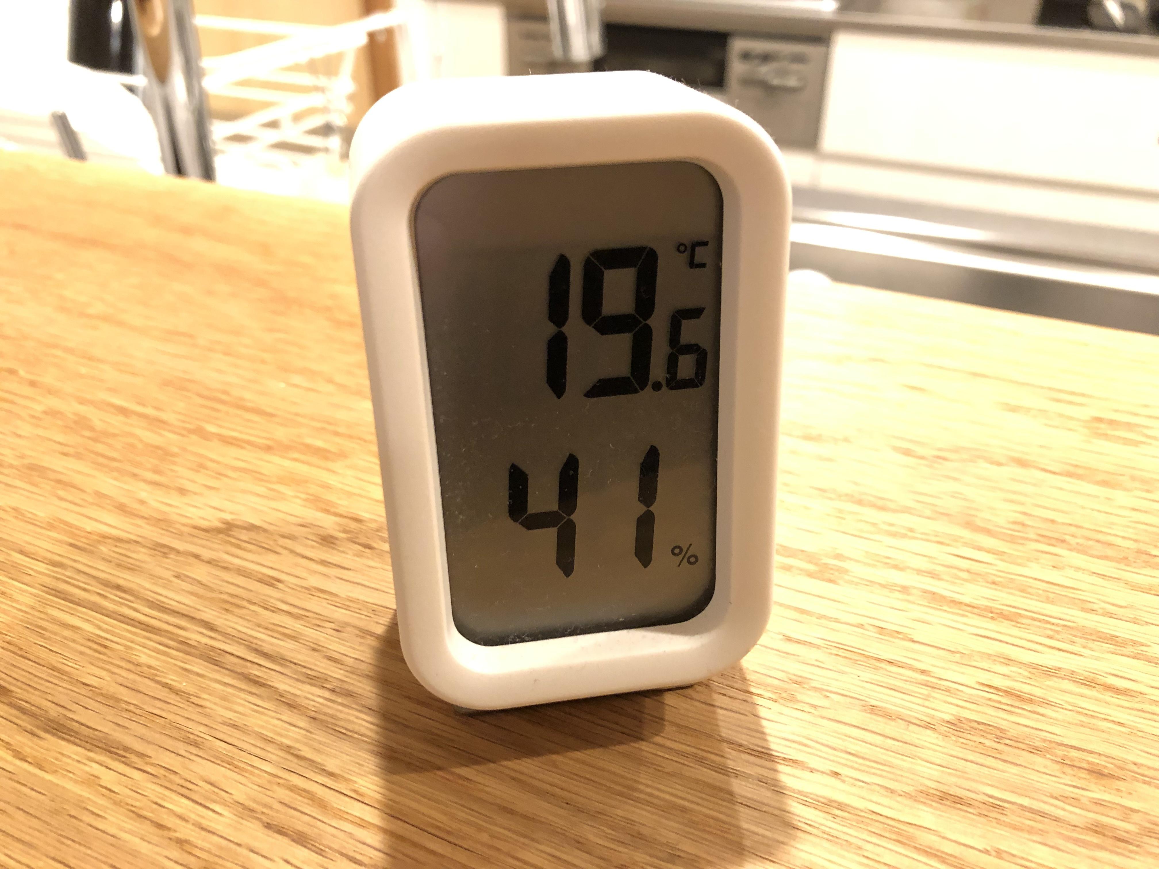 温度計190110