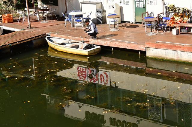 大川紘三_都会の釣り堀11