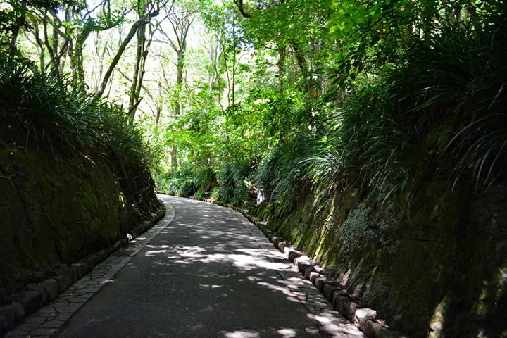 C_戸塚敏子03_文学かへの坂道
