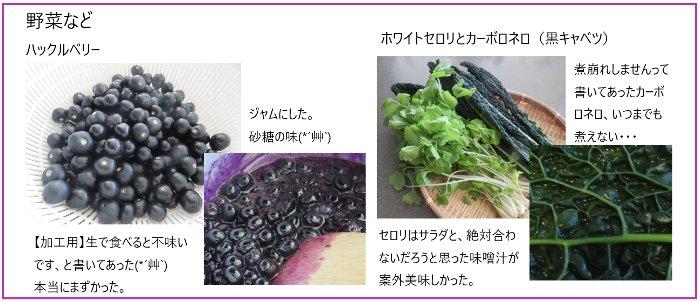 野菜などu