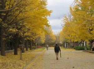 1112中島公園1