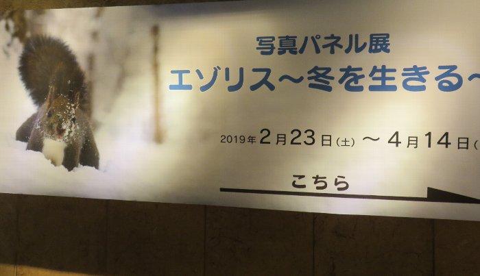 20190224北大