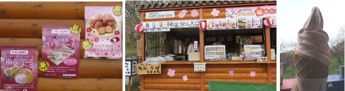 20190502平岡公園梅まつり2
