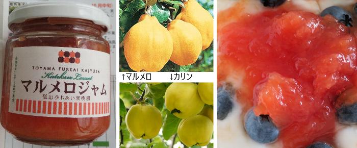 20190728砥山ふれあい果樹園3