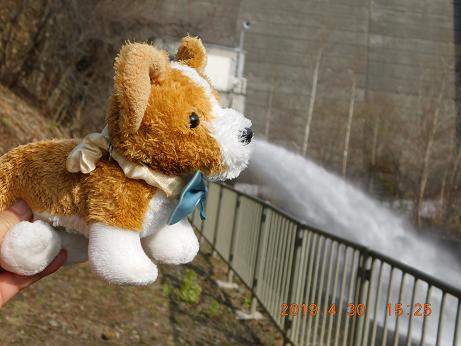 DSCN1544金山ダム (5)