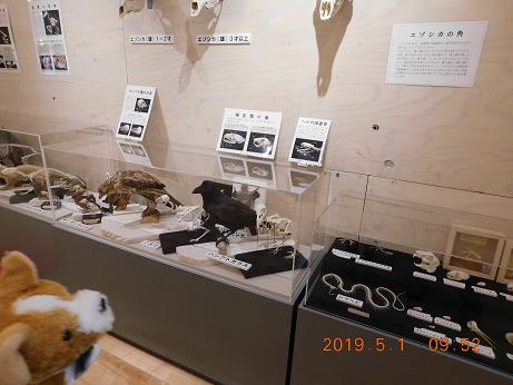 DSCN1589ひがし大雪記念館 (1)