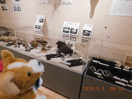 DSCN1589ひがし大雪記念館 (2)