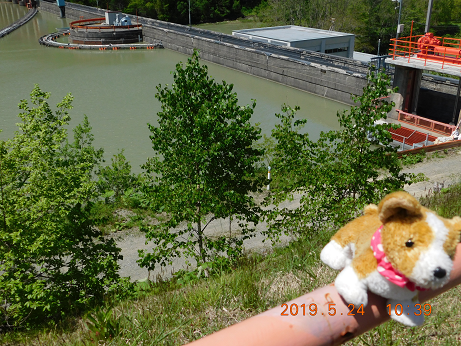 DSCN1773川端ダム (6)