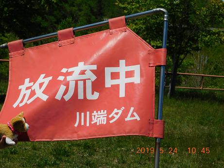 DSCN1773川端ダム (11)