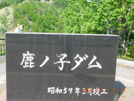 DSCN1788鹿の子ダム (11)