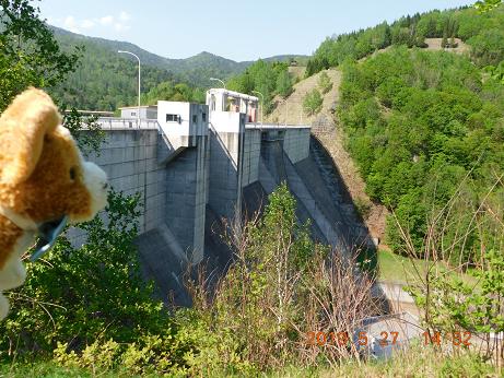 DSCN1788鹿の子ダム (12)