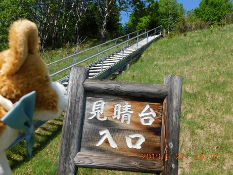 DSCN1788鹿の子ダム (5)