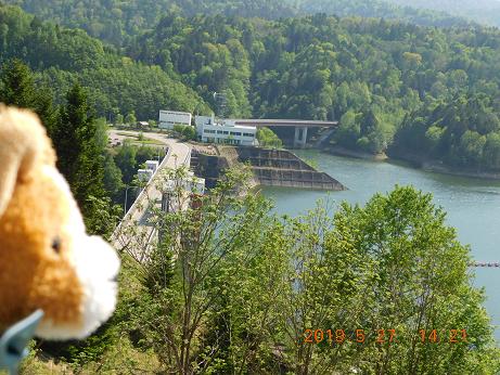 DSCN1788鹿の子ダム (8)