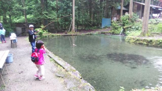 幼馴染の子供がニジマスを釣る