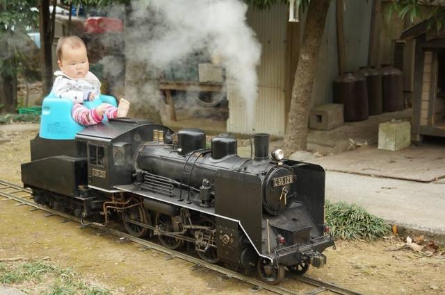 炭水車から汽車を覗き込む息子