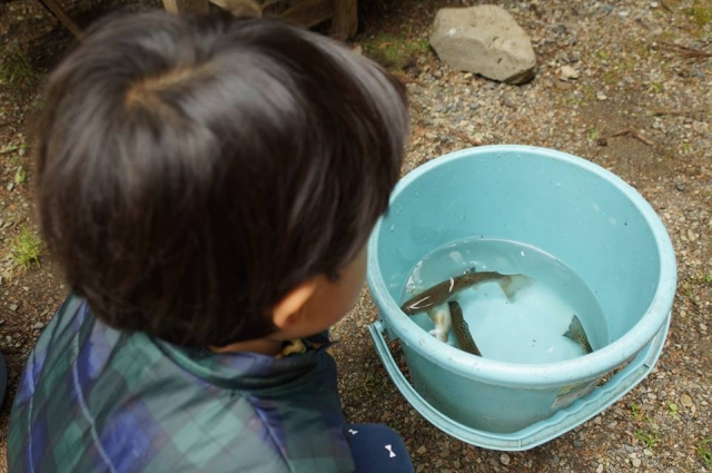 娘、釣った魚を見る