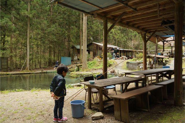 辻野養魚場で釣った魚を