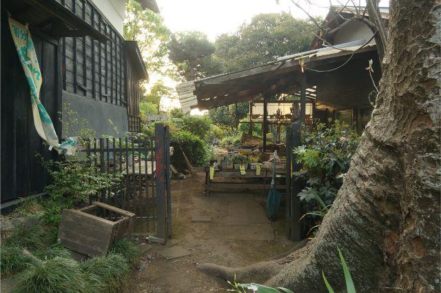 お鷹の道にある農家の野菜売り場