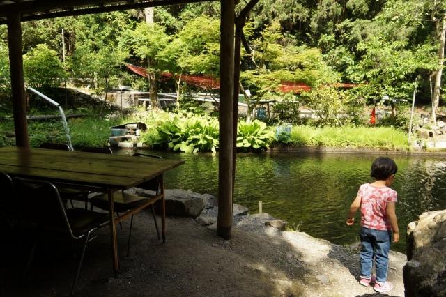 辻野養魚場の池