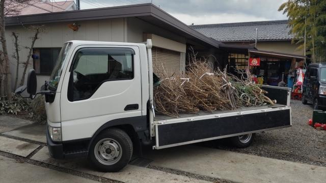 夜のお墓参り