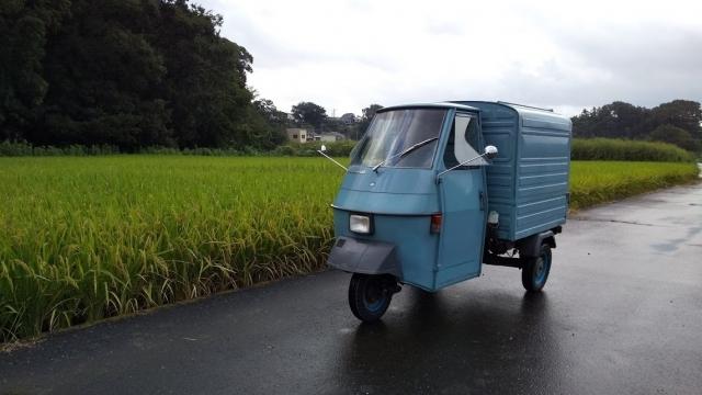 秋川の田んぼ、あと一ヶ月くらいは稲刈りない??
