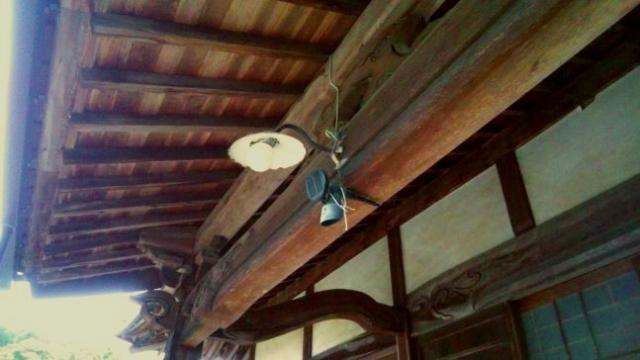 松樹寺の笠松電球