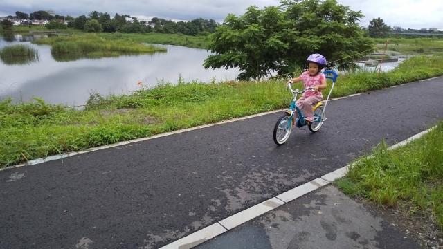 多摩川の堤防を走る