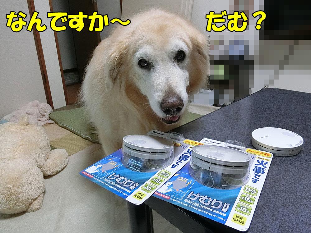2_201810270738085d0.jpg