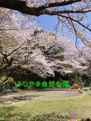 ふじやま自然公園