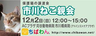 20181202ichikawa_320x120.jpg
