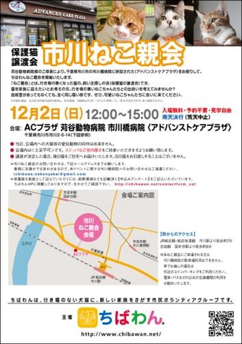 ichikawa23_poster.jpg