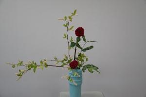 瓶花 ダリア2