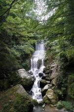 滝 2段プラス