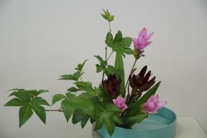盛花 木苺とクルクマ