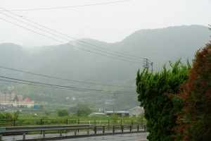 雨に霞む2