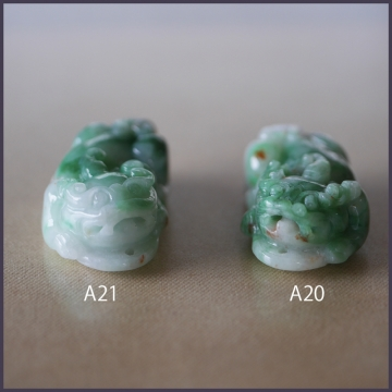 A20 A21 (1)