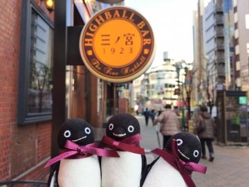 20190206-神戸 (2)