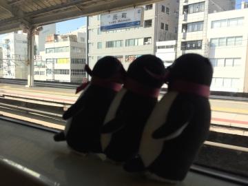 20190206-神戸 (7)