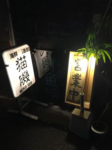 20190209-猫磯 (1)