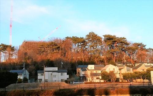 190111ura_no_hayasi