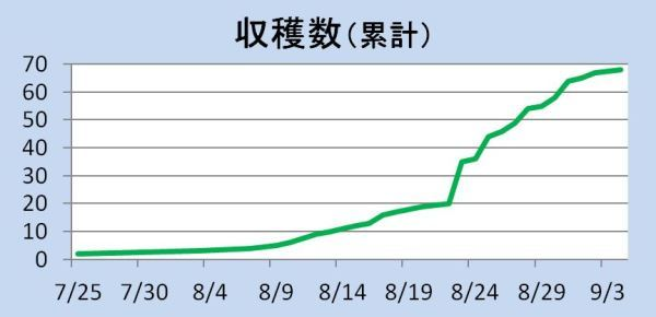 190905goojaa_graph