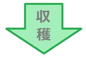 green_yajirusi