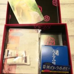 5月BOX