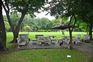 Bangkok Parkscape