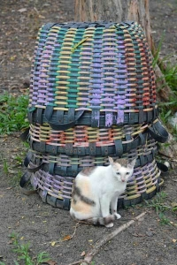 Bangkok Cat and Basket