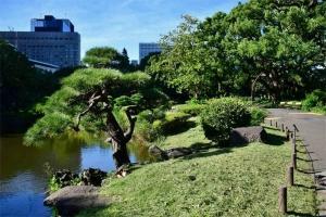 Tokyo Parkscape