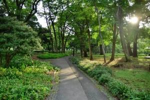 Empty Path
