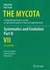 The_Mycota_7Second_PartB.jpg