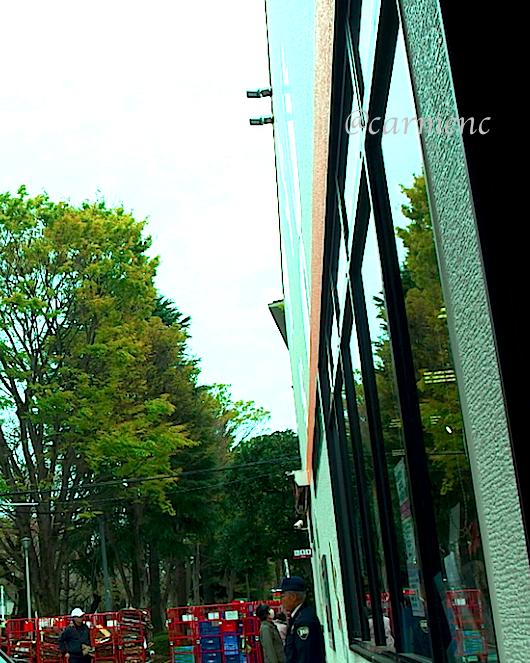 窓に映る駐車場